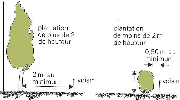 Cloture non mitoyenne distance
